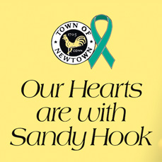 DONATE TO SANDY HOOK ELEMENTARY SCHOOL